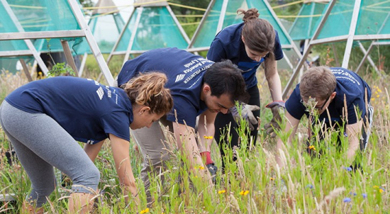 Image of Bank employees volunteering in the My Environment® employee program, image